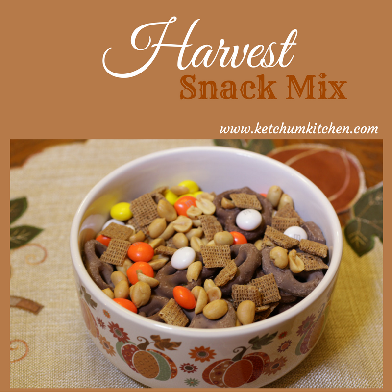 Harvest Snack Mix - Perfect for fall snacking with a salty/sweet combination