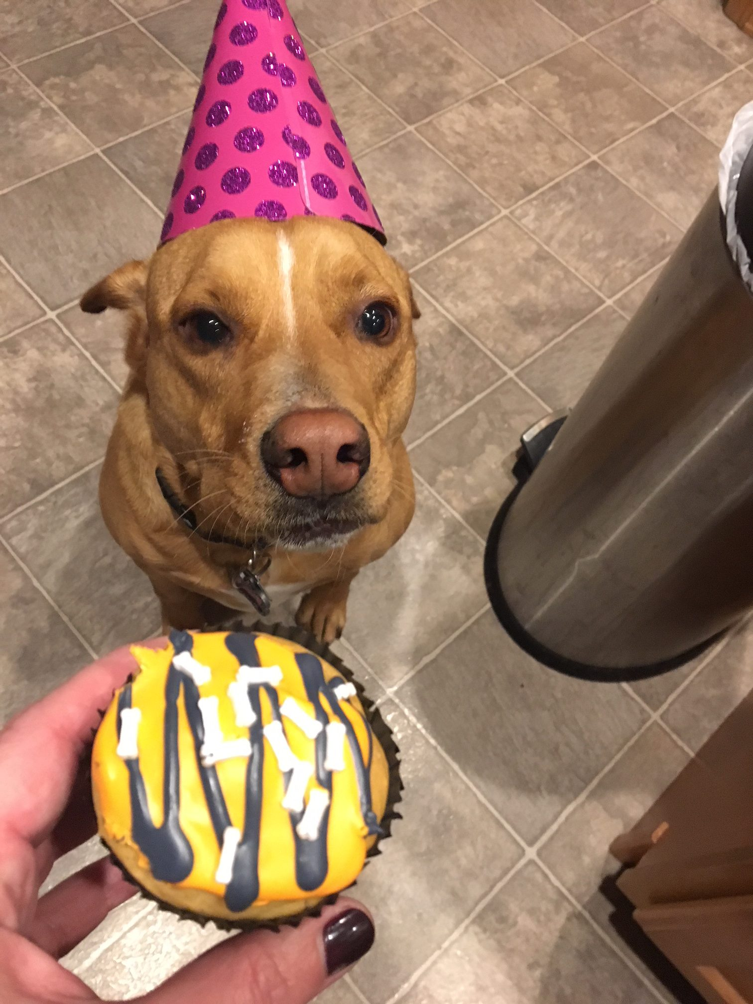 Hope's Fifth Birthday